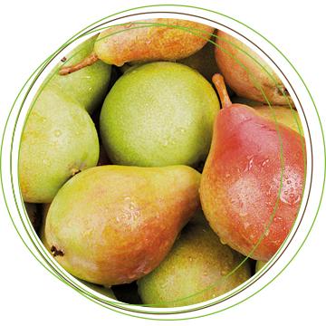 Bio Trading frutta e verdura fresca biologica italiana